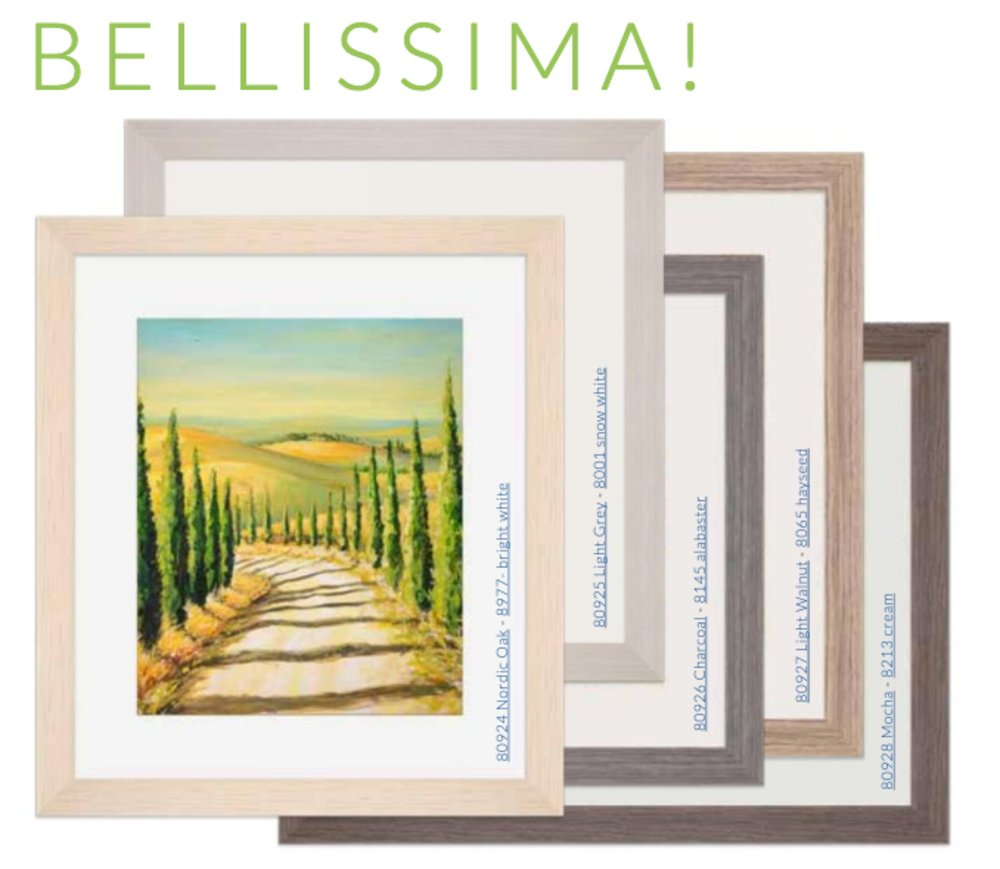 Micro-Tech Italian Picture Frame Mouldings