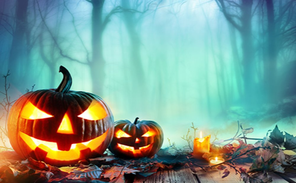 October Pumpkins & Fun Things To Do for the Whole Family