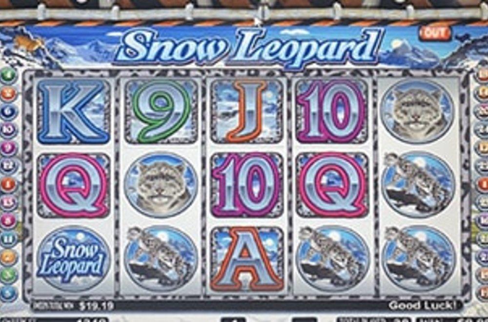 Snow Leopard - Sweepstakes Machine, Slot Game Shop - El Paso Texas