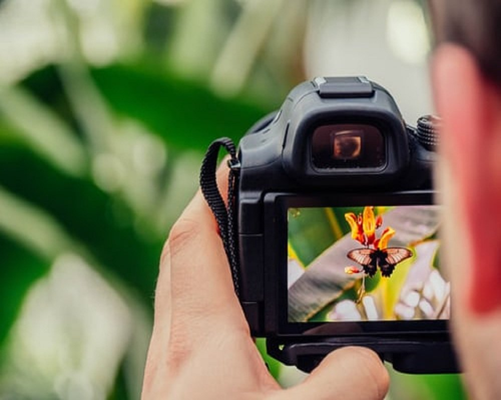 Maur Reles TipsTo Make Photography Your Hobby