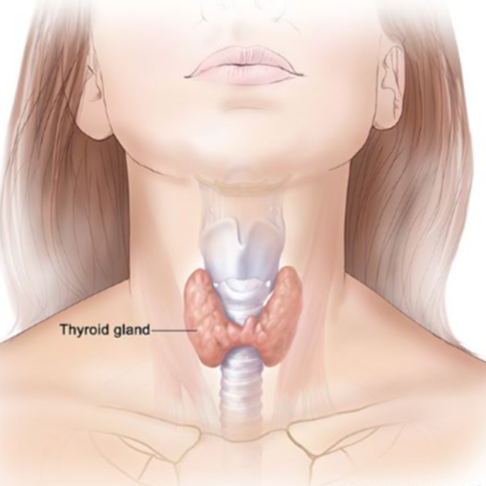 June is Thyroid Awareness Month in Canada