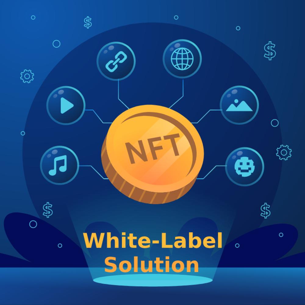 Launch your White label NFT Marketplace Development quickly