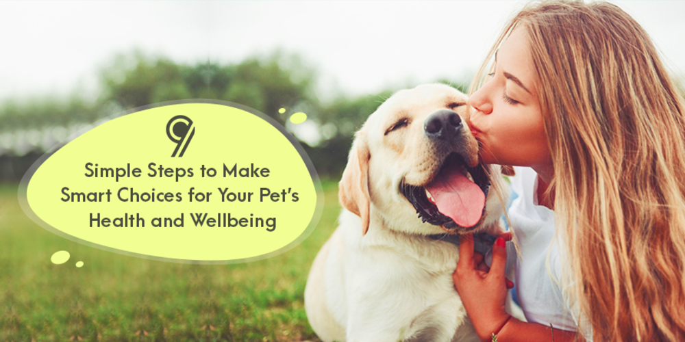 9 Simple Steps to Make Smart Choices for Your Pet's Health and Wellbeing