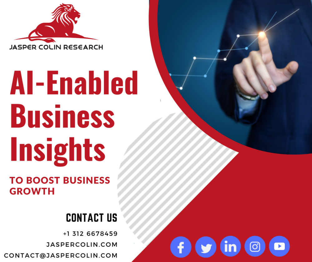 AI-enabled Business Insights