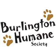 BurlingtonHumaneSociety's Portfolio
