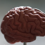 How A Mental Diet Can Reorganize Your Thinking And Improve Your Life