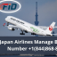 How to Change flight on Japan Airlines?