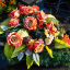 Buy Sympathy and Funeral Flowers Online