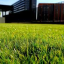 You can improve your home by expanding your knowledge of landscaping