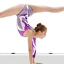 Gymnastics Equipment Has Changed With the Times   Explained!