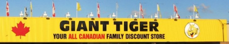Giant Tiger Grocery Flyer