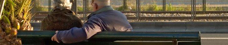 Seniors Health in Guelph Region