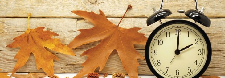 It's Fall! 3 Things You Must Do to Thrive Until Spring…