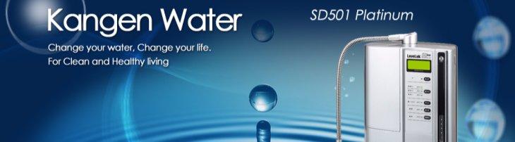 Why Drink Alkaline Ionized Water