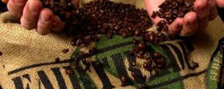Why Drink Fair Trade Coffee?
