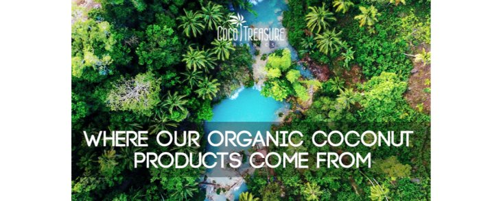 Where Our Organic Coconut Products Come From