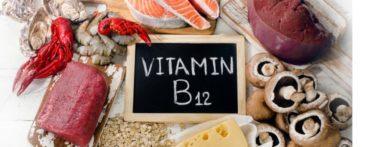 Why You Need Vitamin B12