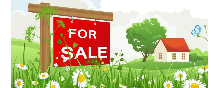 IMPROVE YOUR HOME'S VALUE THIS SPRING