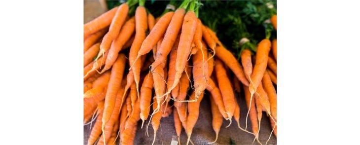 Sourcing local food has never been easier!