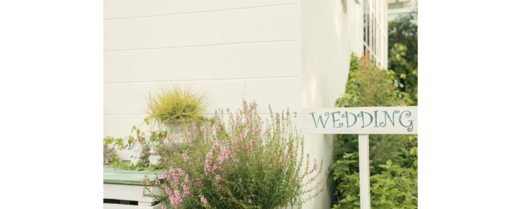 How To Choose Between Two Wedding Vendors