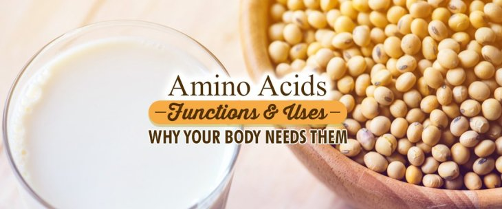Amino Acids Functions And Uses: Why Your Body Needs Them