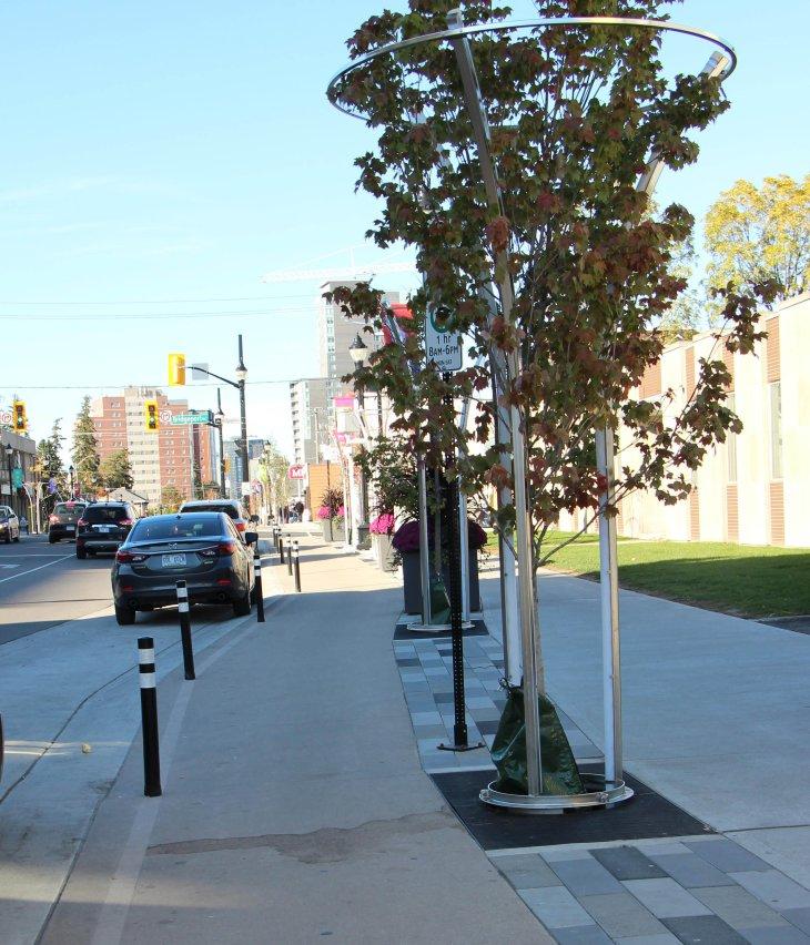 What do segregated bike lanes look like in Waterloo . . ..
