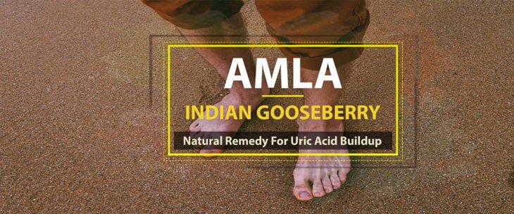 Amla (Indian Gooseberry): Natural Remedy For Uric Acid Buildup