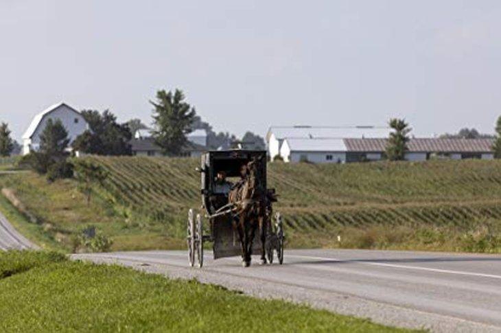 Mennonite Cultural Tour
