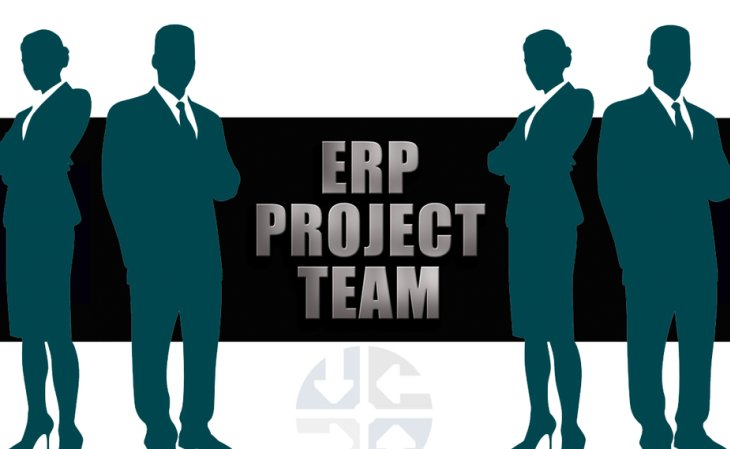 ERP Project Team Structure Roles & Responsibilities