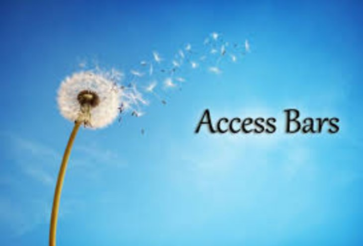 What is Access the Bars?