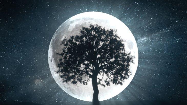 Full Moon Abundance Ritual