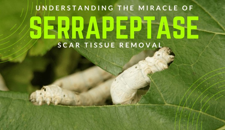 Understanding The Miracle of Serrapeptase Scar Tissue Removal