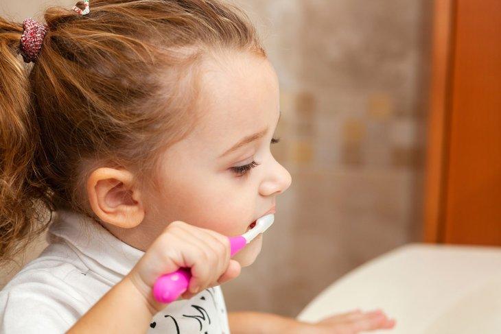 Wide Range Of Dental Services