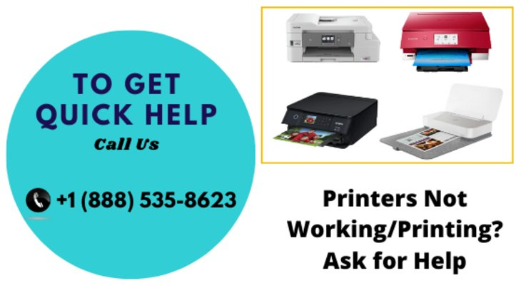How To Fix Roland Printer Not Printing?