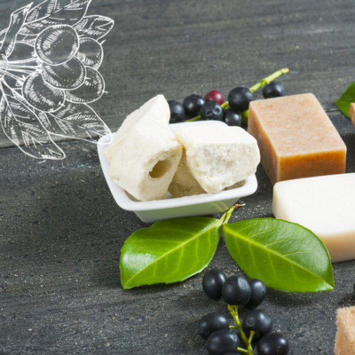 Nutrients in Shea Butter