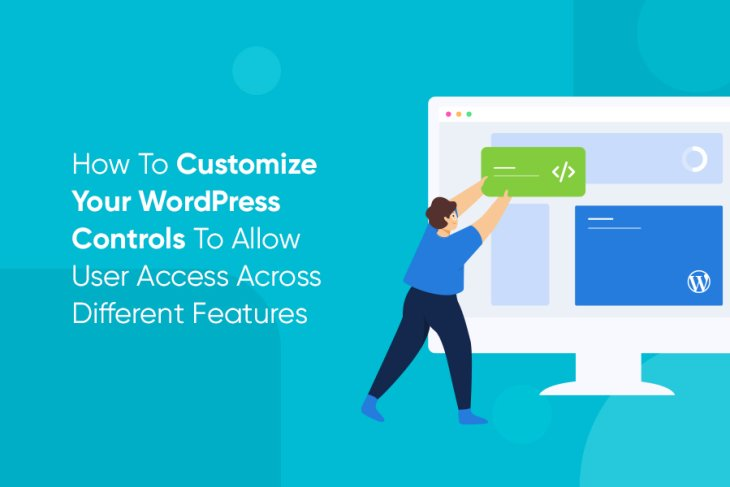 How To Customize Your WordPress Controls?