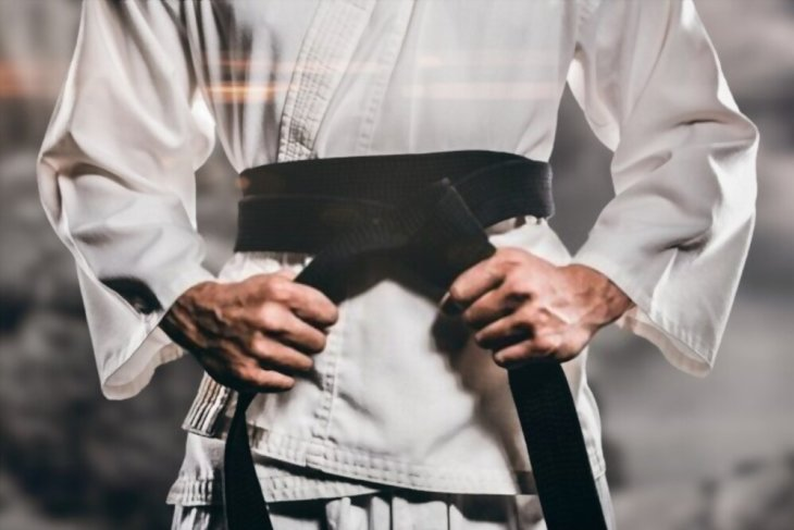 This is what the belt colors mean in Karate