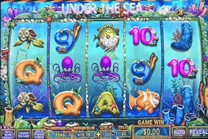 Under The Sea - Sweepstakes Machine, Slot Game Shop - El Paso Texas