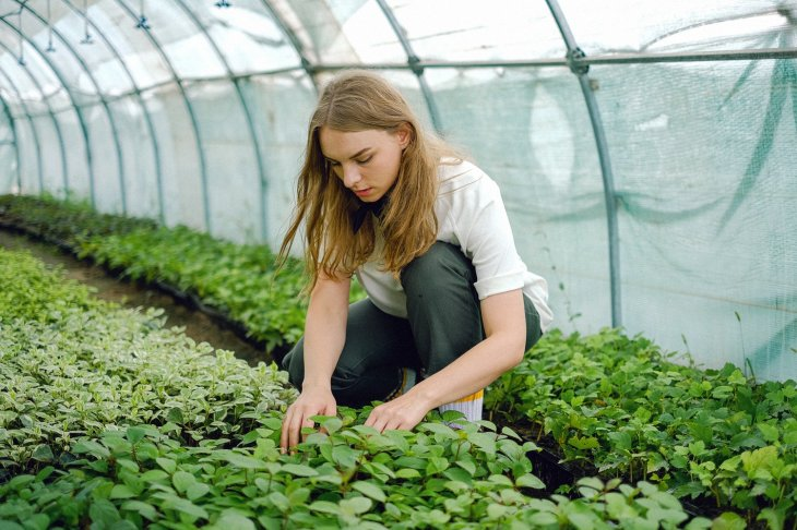 Career as Horticulturist