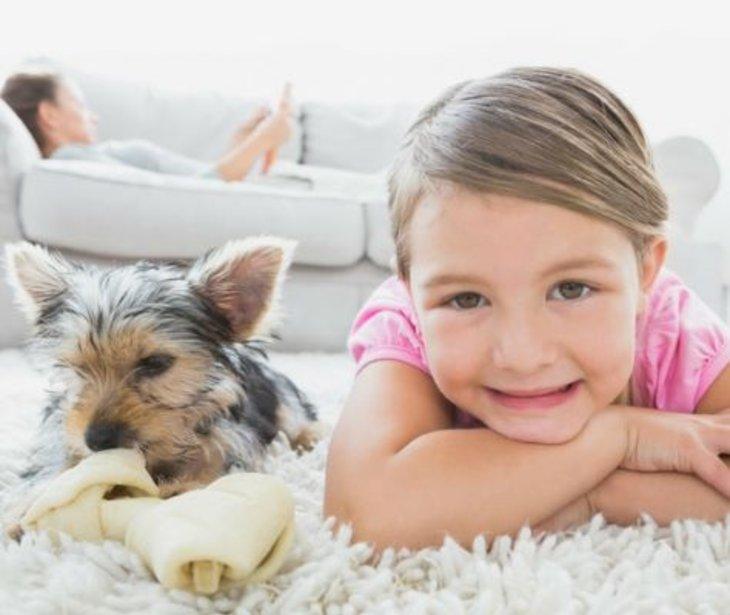 Health Benefits of Carpet vs Flooring