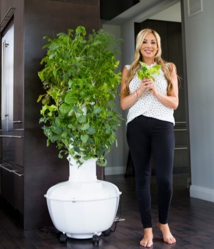 Fresh Fruits and Herbs 365 days a year with Tower Garden!