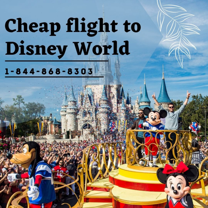 How to Get a Cheap Flight to Disney World?