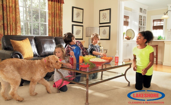 Kids, Pets, and Guests. It's a busy place for my Carpets!