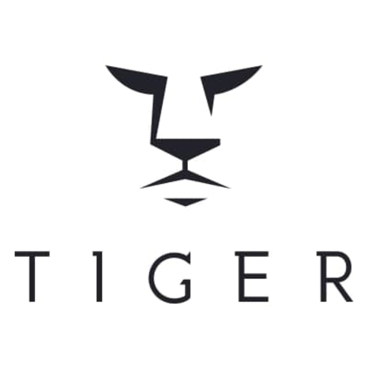 Tiger Financial: Get The Best Bridging Loans Right Now!