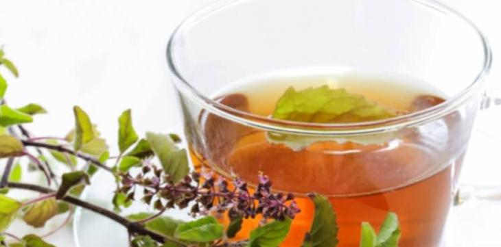 Tulsi Tea (Holy Basil): A Sacred Herb with Amamzing Health Benefits