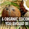 If you think coconut oil is the only coconut product worth buying, think again. Here are other organic coconut products to use.