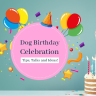 If you are among the pet parents who do Pet Birthday Celebration, you'll definitely love to add some more interesting ideas to your upcoming dog birthday party.
