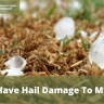 High-speed winds and hail can cause a significant amount of damage to your roof...