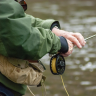 What is the best time of day to fish for bass? Find out here. The largemo bass is predatory fish using competitive feeding habits.  They may be captured at any