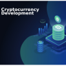 A cryptocurrency development company brings 360° expertise into the process of creating crypto coins.